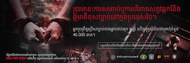 poster-02.jpg