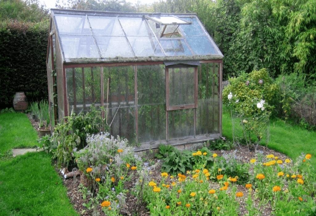 garden,botanical gardens,plants,interior garden,gardening tips,garden ideas,gardening tools,garden design,landscaping