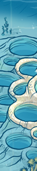 WATER-1.png