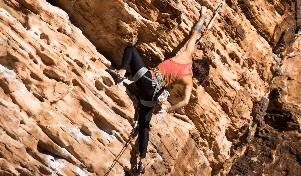 Climbing Technology Products