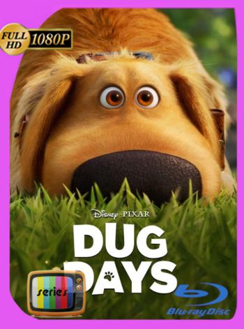 La Vida de Dug (2021) Temporada 1 DSNP WEB-DL [1080p] Latino [GoogleDrive]