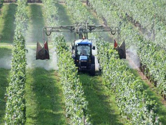 Agricoltura-riforma-del-servizio-fitosanitario