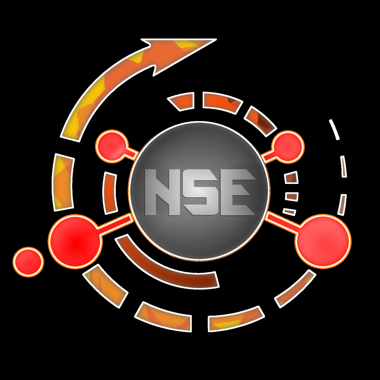 [Image: NSE-logo3-1.png]