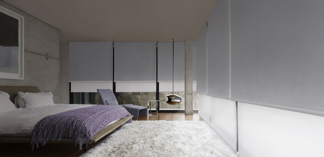 Shag-rug-and-glass-walls-in-modern-bedroom.jpg