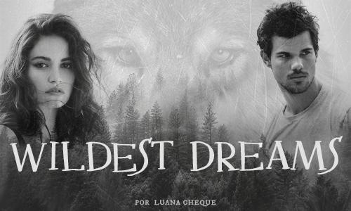 Capa-Wildest-Dreams