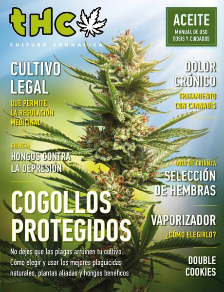 [Imagen: Revista-THC-noviembre-2020.jpg]