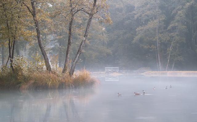 Bassin de pêche 1180672