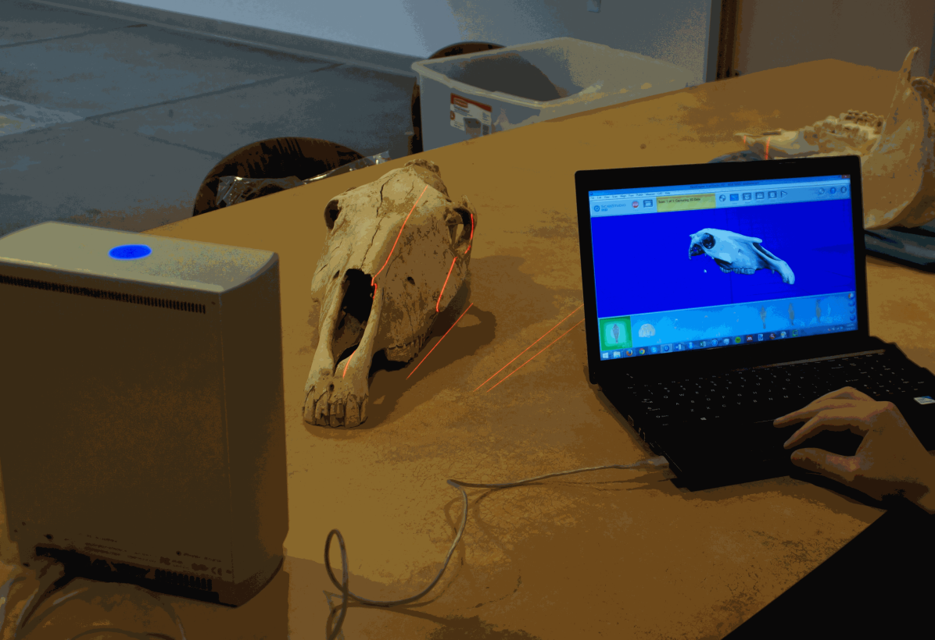 3D Scanner Workshop