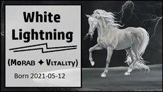 White_Lightning.jpg