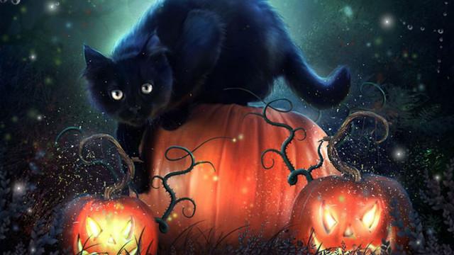 happy-halloween-kuro.jpg