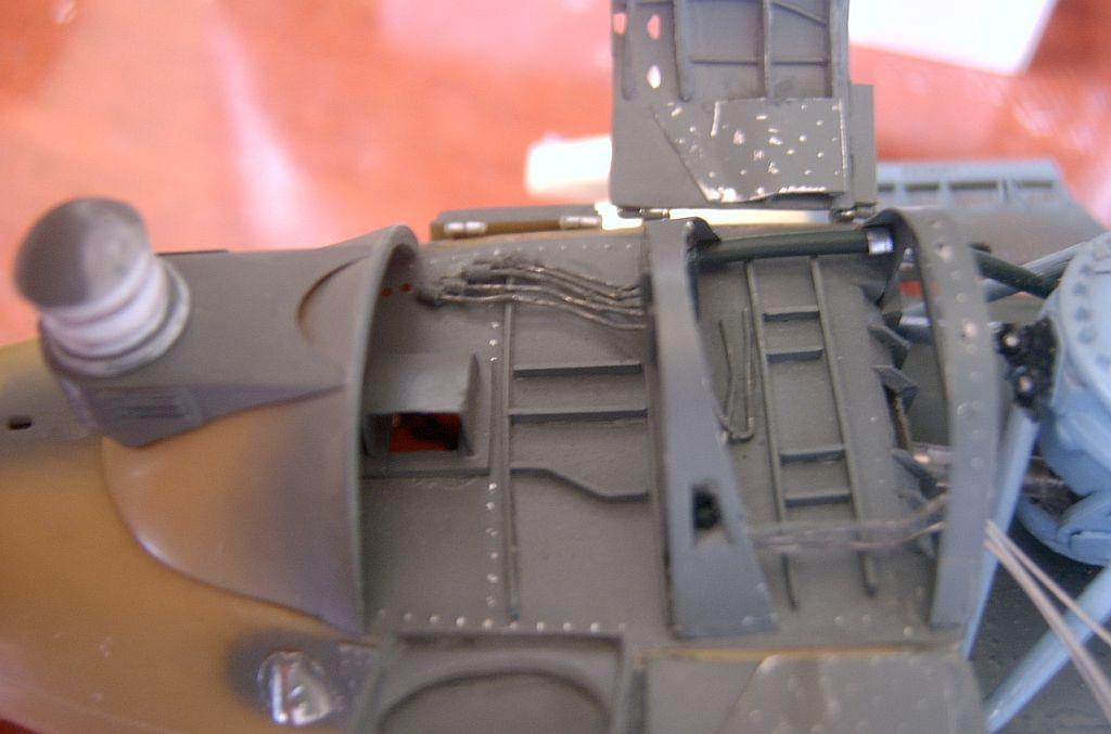 Hind-F1551.jpg