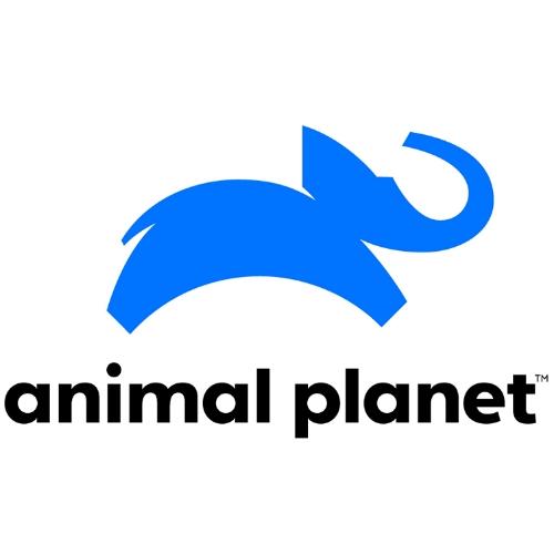 animal-planet.jpg