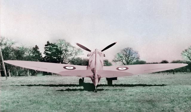 pinkspit.jpg