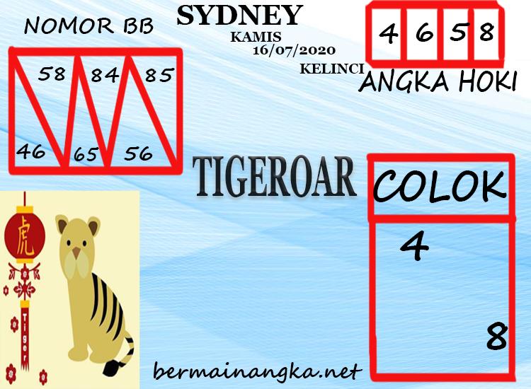 TIGEROAR-SYDNEY-16