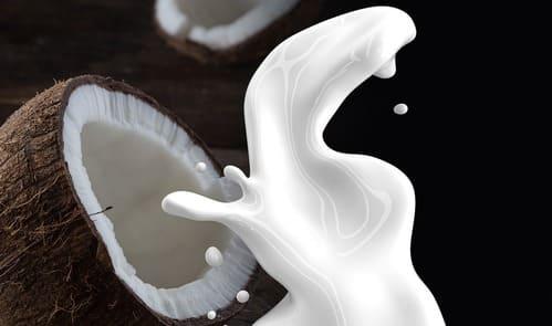 Receita de leite e farinha de coco