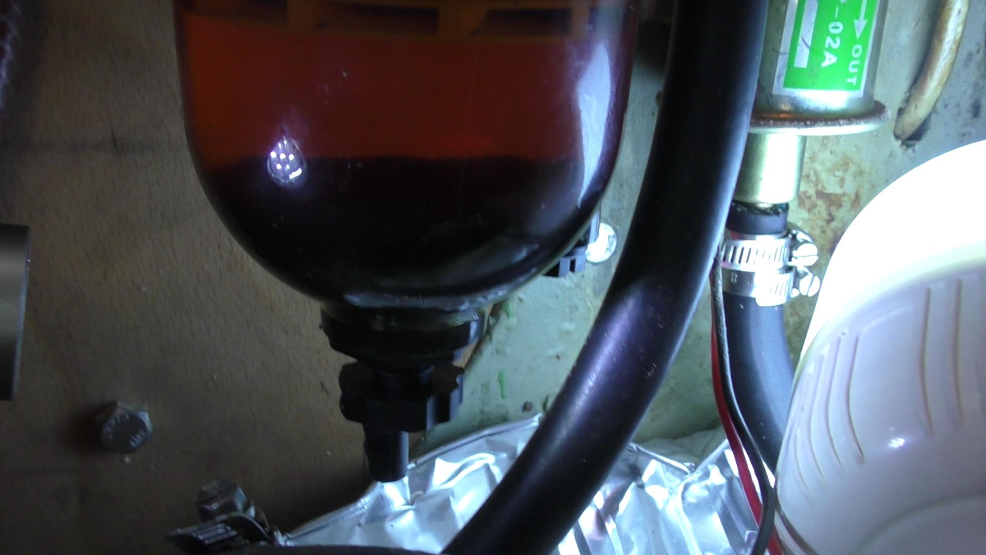 diesel-bug-Still005.jpg