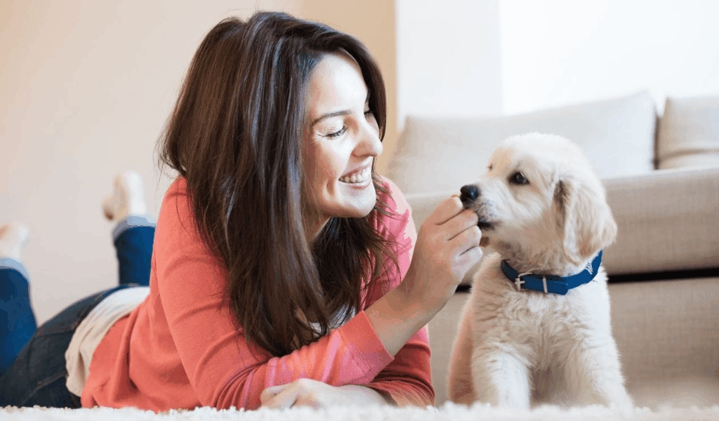 Stunning Information About Pet Health Problems Revealed