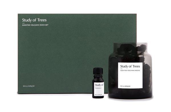 Study of Trees Volcanic Rocks Pack