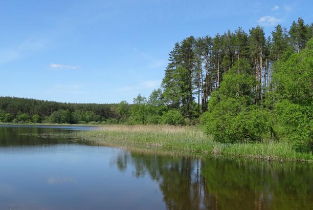 #озеро #Луговое  //  нфд жж-дк  расф ф-кто *** пдб-ок-пин-лр-як