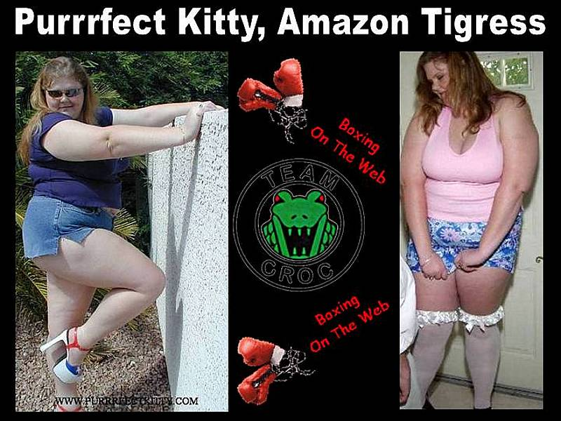 Amazon-Purrrfect-Kitty-Tigress-wl-intro