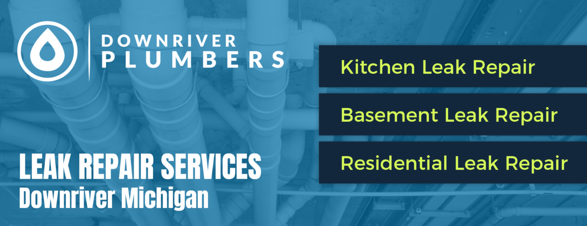 Downriver Michigan Plumbers: A Place for Bathroom Leaks Solution