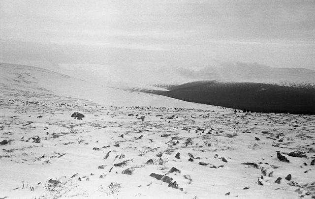 Dyatlov-pass-1959-search-251