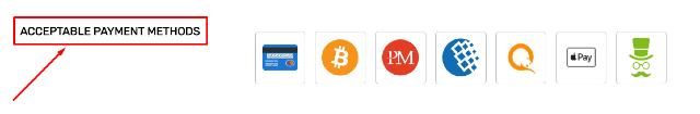 views.biz payment methods
