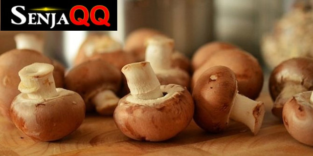 6 Jenis Jamur yang Enak, Lezat dan Aman Dikonsumsi