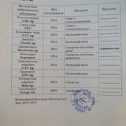 Москва, Сафира, сука 13.07.2017 г.р. Wt9r-Mgr5-JDg