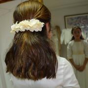 Minitiara-hortensias