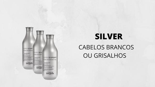 OTEUCABELO-SILVER-SHAMPOO-LOREAL-PROFESSIONEL
