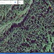 https://i.ibb.co/SvkvPDL/QIP-Shot-Screen-906.jpg