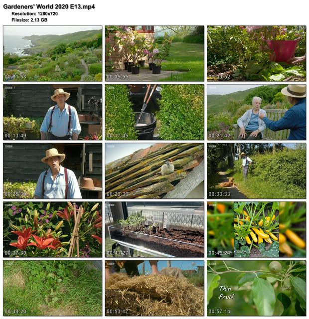 Gardeners-World-2020-E13.jpg