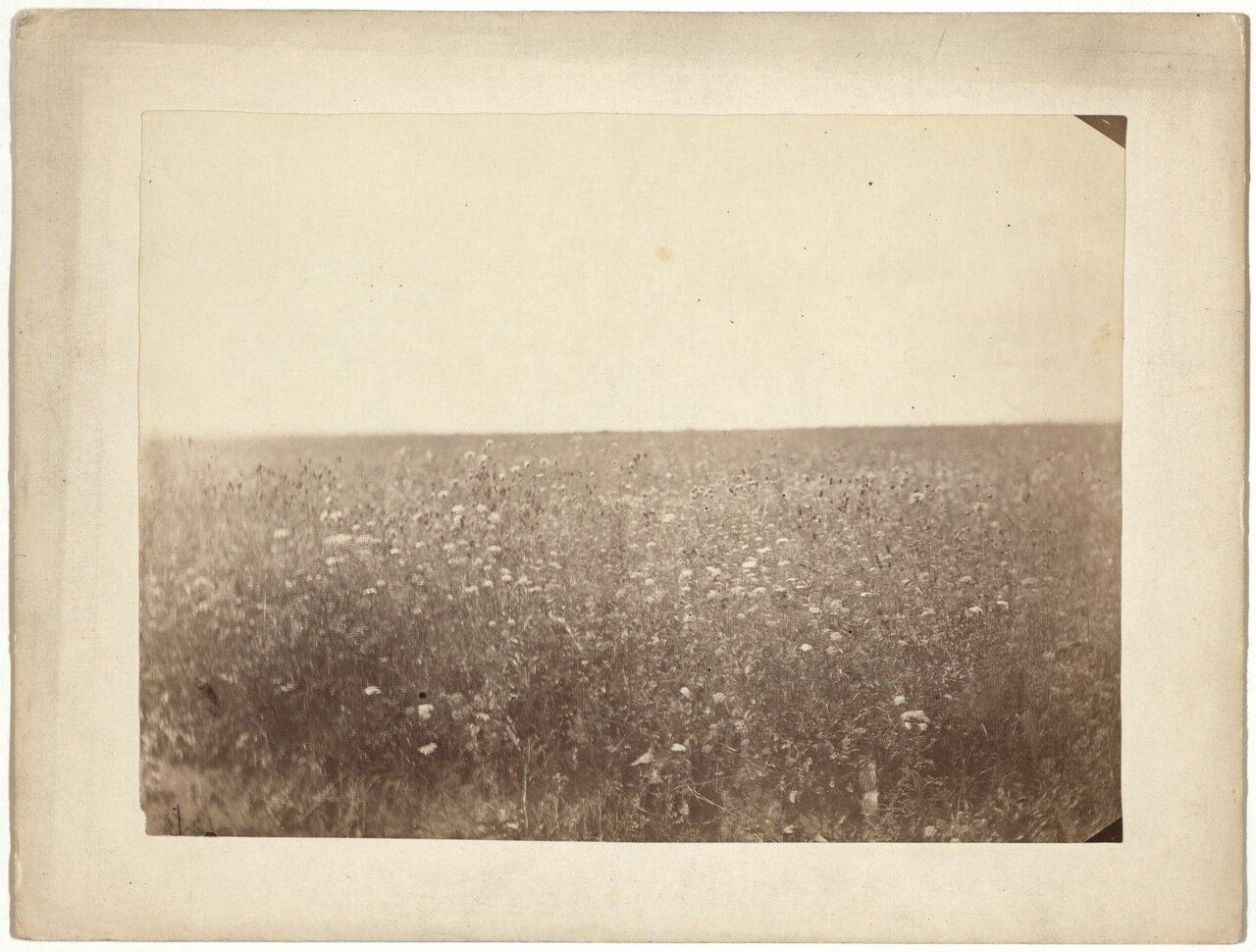 1885.jpg