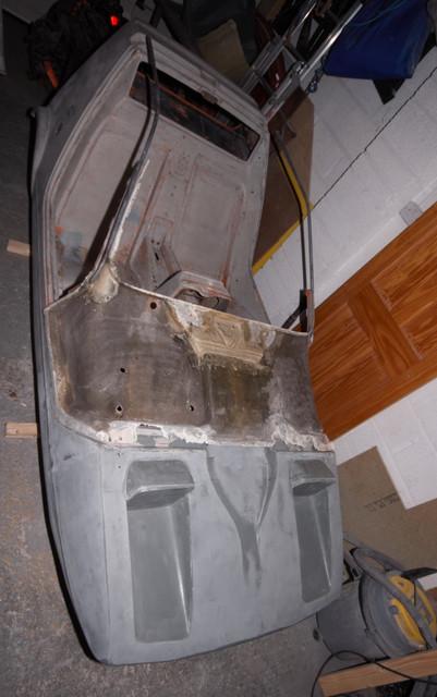 Steel-in-canopy-3j