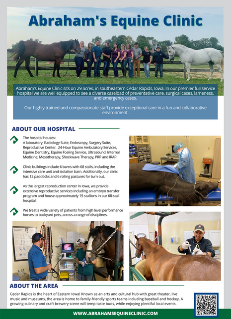 Abraham-s-Equine-Clinic-1-Pager