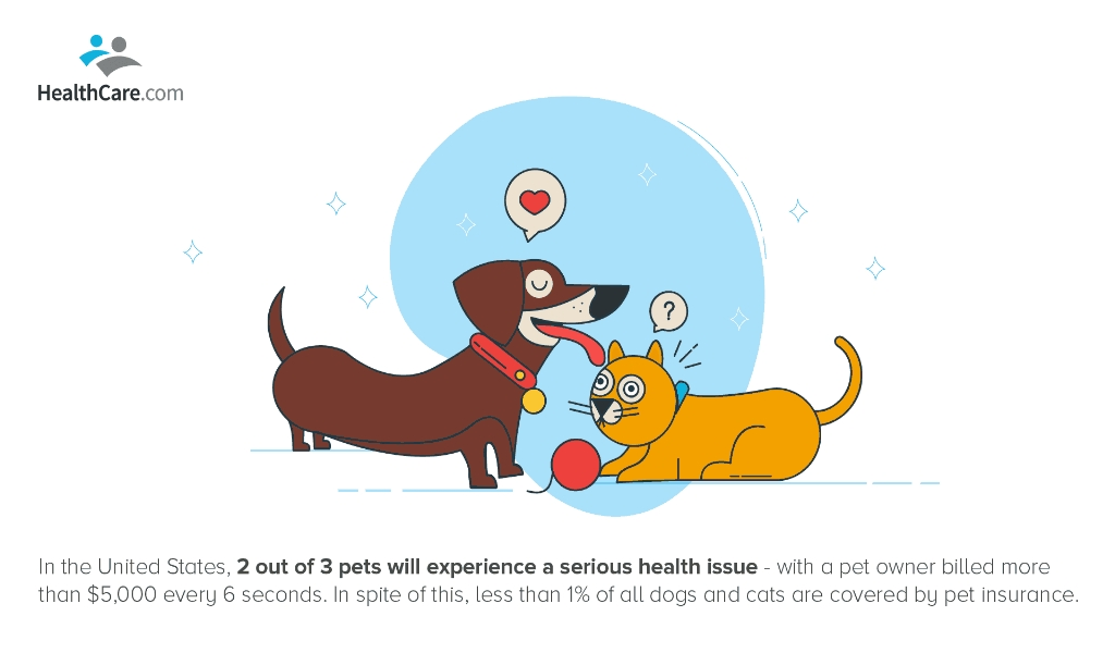 Complete Pets Dog Insurance