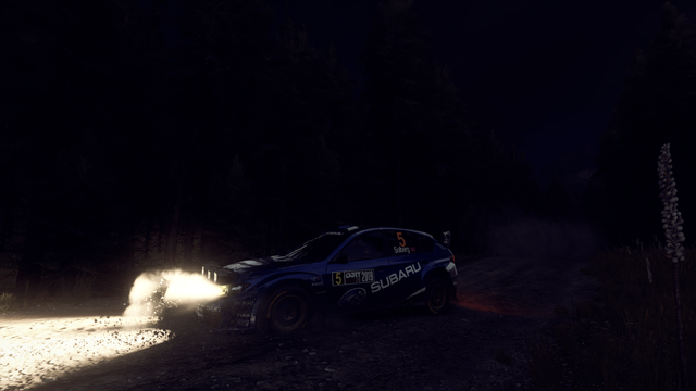 dirtrally2-2021-02-22-21-54-18-45.png