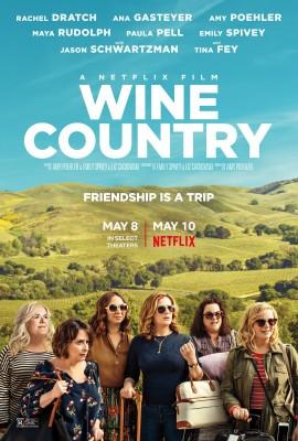 Wine Country (2019) .mkv FullHD ITA NF WEBRip 1080p  - Sub