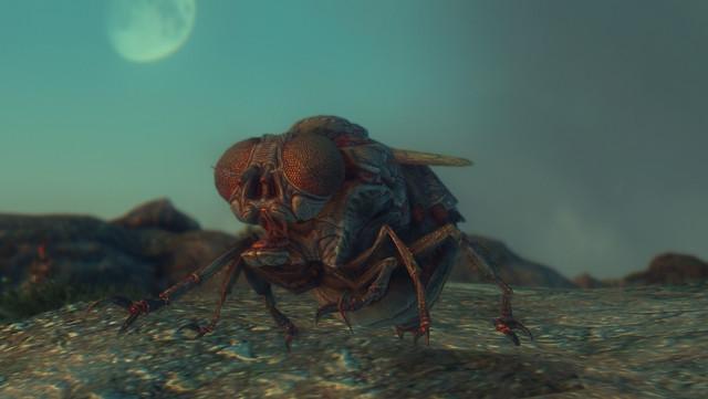 Fallout Screenshots XIV - Page 23 20200722234215-1