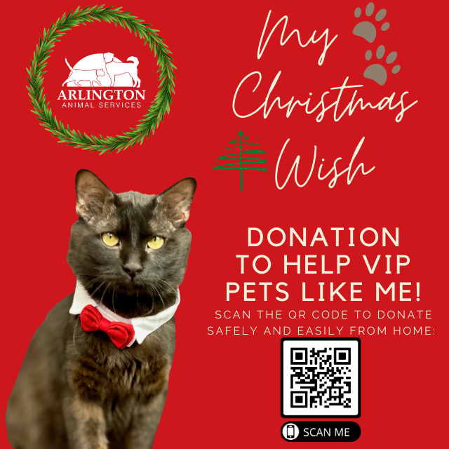 Animal-Services-2020-Angel-Tree-048.png