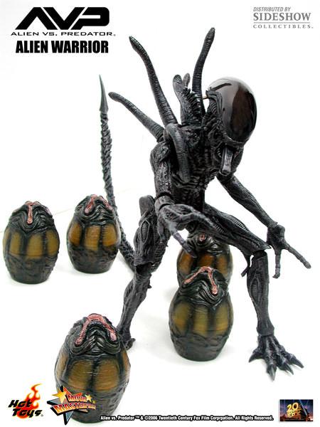 https://i.ibb.co/TKFKJ5n/mms17-alienwar13.jpg