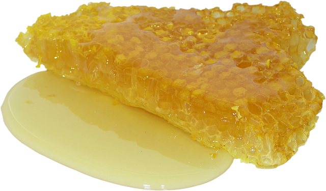 [Image: honey-2201210-640.png]