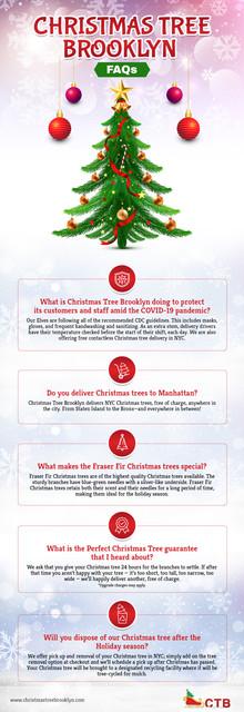 Christmas-Tree-Brooklyn-FAQs.jpg