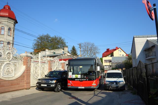 IMG-8528.jpg