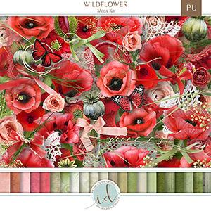 ID-Wildflower-prev1