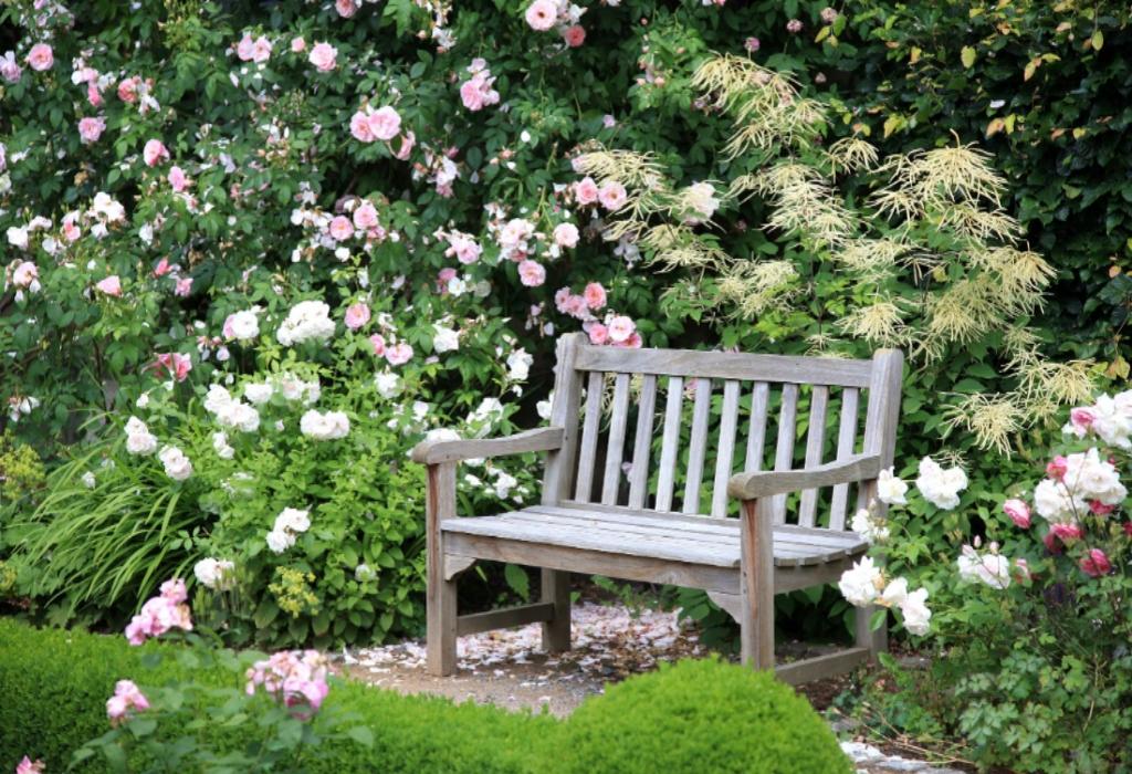 Home Gardening Plans
