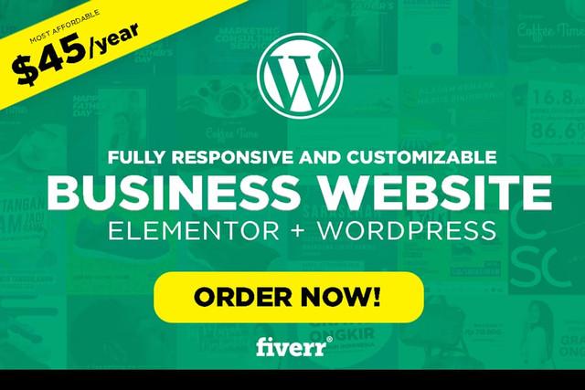 fiverr-budget-web-design-lintang-kresnadi