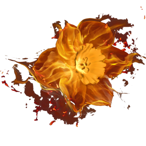 kisspng-touching-eternity-fire-flower-combustion-flowers-burn-5a7b5c4164b550-04835877151803398541253.png