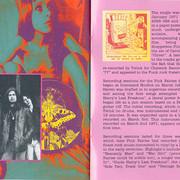 Pink-Fairies71-Never-book-7